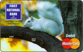 White squirrel debit card design.