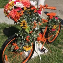 Rte 130 large bike